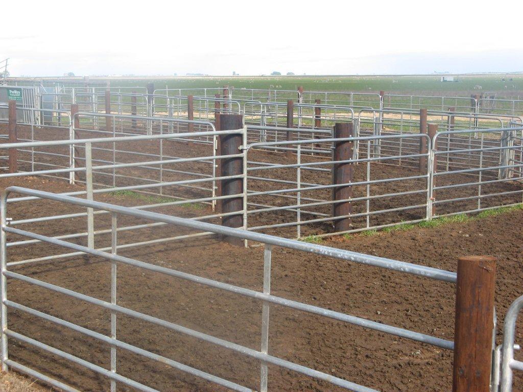 Portable Sheep Yard Panel Galvanised Stewart Trading
